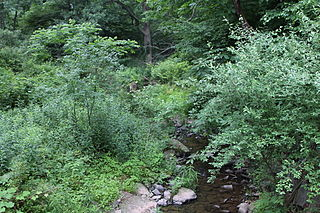 Kingsbury Brook river in the United States of America