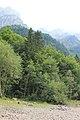 Klöntalersee - panoramio (22).jpg