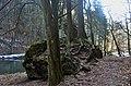 Kořeny - panoramio (2).jpg
