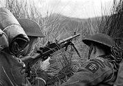 two men prone in long grass one armed with a Bren gun