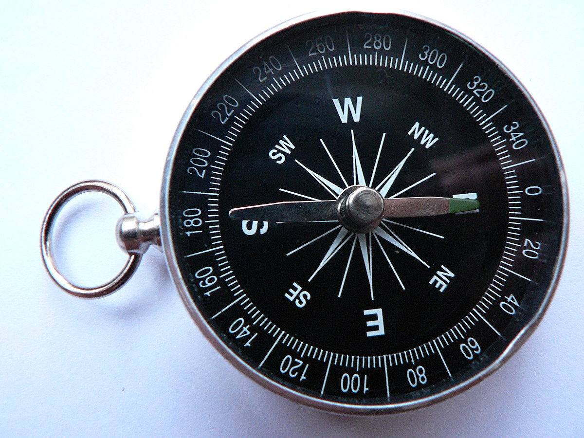 Swinging vertical card compass
