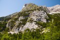 Kranjska Gora (9782624931).jpg