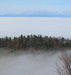 Ljubljana Basin - Ljubljana Basin in the mist (view from Krim in the south towards the north)
