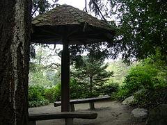 Kubota Garden 18.jpg