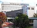 Kurume IWATAYA.JPG