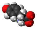 L-Tyrosine-zwitterion-3D-spacefill.png