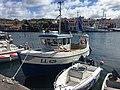 LL 629, Grundsund.jpg