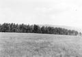 Landschaftsbild - CH-BAR - 3241214.tif