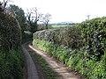 Lane to Nant - geograph.org.uk - 1242420.jpg