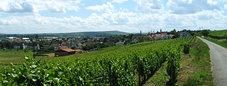 Langenlonsheim - View from the east; to the left flows the Nahe