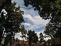 Langit Biru Kampus Ngoresan.jpg