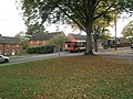 Leaves on the grass in Cromwell Road - geograph.org.uk - 1548830.jpg