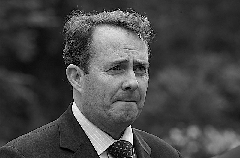 File:Liam Fox MP, 2007.jpg
