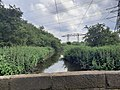 Lin Dike looking east from Ledston Mill Lane (geograph 6506769).jpg