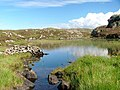 Loch na Creige Leithe - geograph.org.uk - 239761.jpg