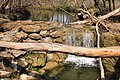 Lockhart state park ccc dam 1.jpg
