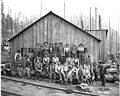Logging crew at camp, Ebey Logging Company, ca 1917 (KINSEY 156).jpeg