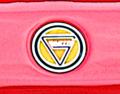Logo ginetta.png