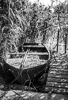 Picture of a boat taken on Fomapan R 100 black-and-white reversal film