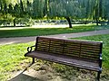 Long shot of the bench (OpenBenches 1785-1).jpg