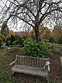 Long shot of the bench (OpenBenches 2857-2).jpg