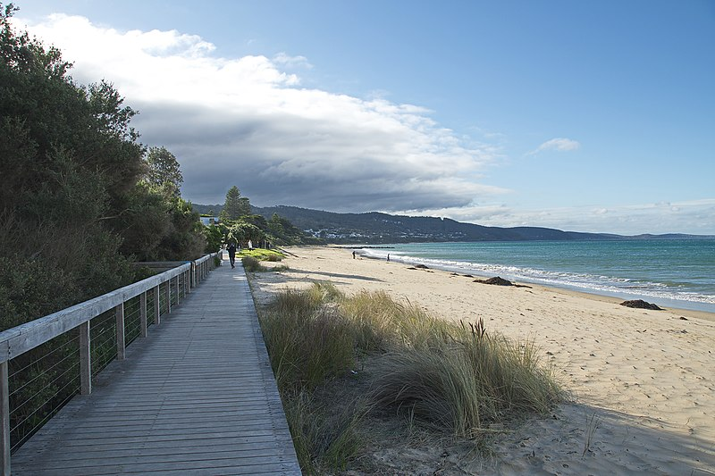 Great Ocean Road: 8 Best Spots to Visit on Your Car Trip