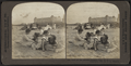 Love at the Seaside -- Atlantic City, N.J, from Robert N. Dennis collection of stereoscopic views.png