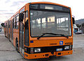 Lucera - Un Autosbus della ditta Lucera Service.jpg