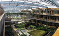Lumen Building Greenhouse.jpg