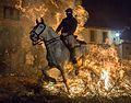 Luminarias- caballos sometidos al fuego (23851169404).jpg