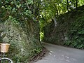 Luscombe lane - geograph.org.uk - 35772.jpg