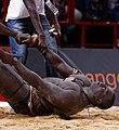 Lutte sénégalaise Bercy 2013 - Youssou Ndour-Matar Guèye - 34.jpg