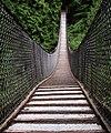Lynn canyon bridge.jpg