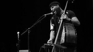 Miles Mosley American musician