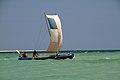Madagaskar Bucht von Toliara Küstensegler.JPG