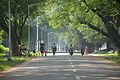Main Road - IIT Campus - Kharagpur - West Midnapore 2015-09-28 4076.JPG