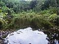 Mare aux Cochons Seychelles.jpg
