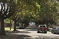 Marrickville NSW, Australia - panoramio - Maksym Kozlenko (5).jpg