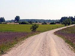Marskone, 2006-08-11.jpg