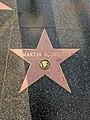 Martin Scorsese Hollywood Star.jpg