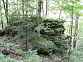McConnells Mill State Park - Pennsylvania (4883943928).jpg