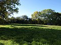 Meadow at Shobley - geograph.org.uk - 1543764.jpg