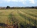 Medieval ridge and furrow, Catworth, Hunts - geograph.org.uk - 1553659.jpg