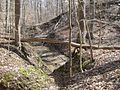 Meeman-Shelby Forest State Park Shelby County TN 2014-02-23 008.jpg