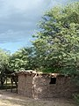 Melhok ki (ocotillo house), O'odham dwelling (2dcf93dd-3177-463c-b1f0-0d6c909bf9cf).JPG