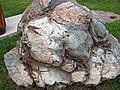Metamorphosed pillow basalt (Ely Greenstone, Neoarchean, ~2.722 Ga; large loose block at Ely visitor center, Ely, Minnesota, USA) 9 (20832324343).jpg