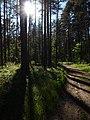 Meza taka - panoramio (4).jpg