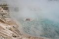 Midway Geyser Basin 7.jpg