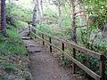 Millbuies Country Park - geograph.org.uk - 1346716.jpg