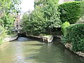 Millstream by the weir - geograph.org.uk - 1387396.jpg